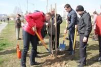 Закладка сквера молодежи в г.Солигорске
